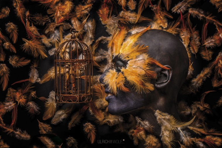 The Birdcage by Ulrich HM Wolf
