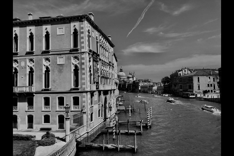 Venezia Biennale 2020-2